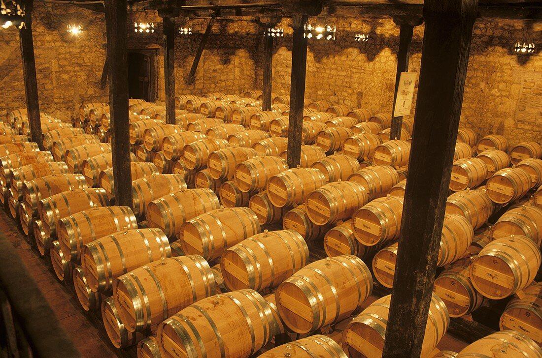 Bodegas Muga,  Haro,  Rioja Alta,  Rioja,  Spain