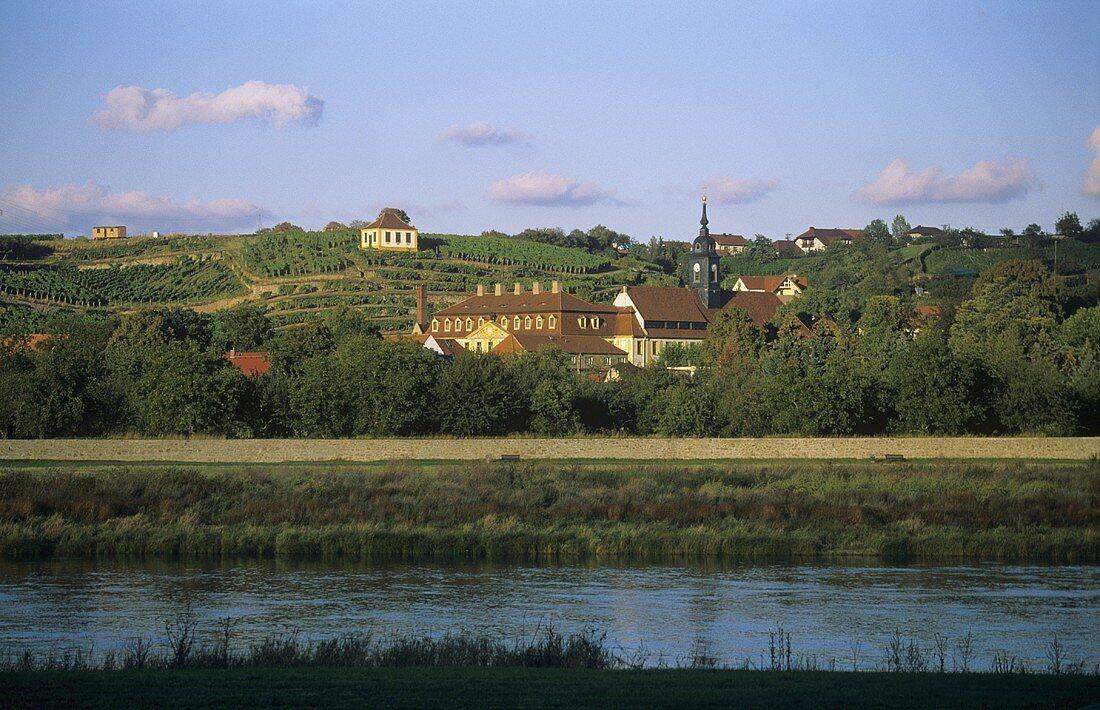 View of 'Seusslitzer Luisenburg' vineyard site & Diesbar-Seusslitz castle, DE