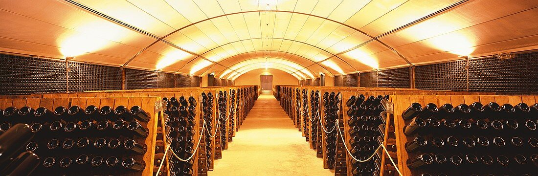 Wine cellar with pupitres, Yarra Valley, Australia