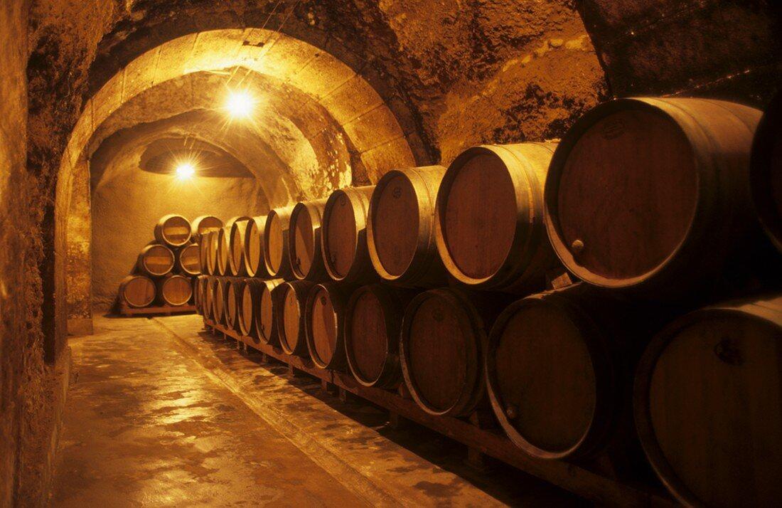 Artadi-Cosecheros-Alaveses barrel cellar, Laguardia, Rioja, Spain