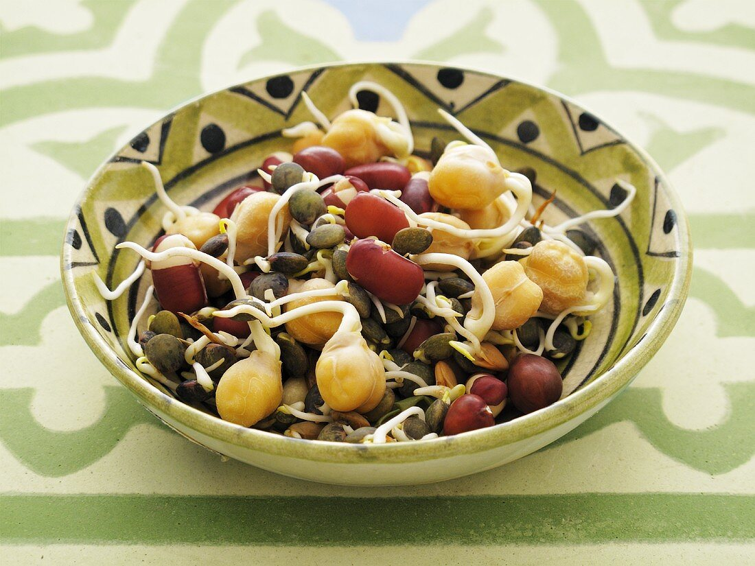 Various sprouts in a ceramic bowl