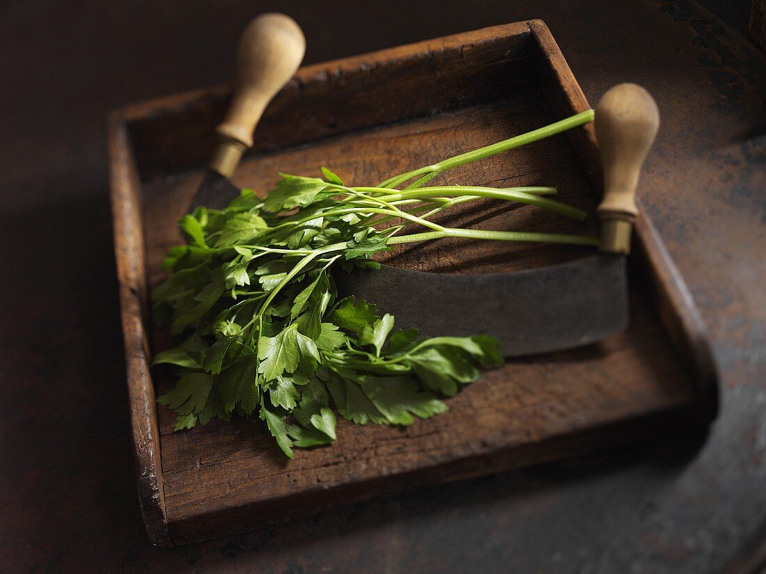 Fresh parsley with a chopping knife on a wooden board