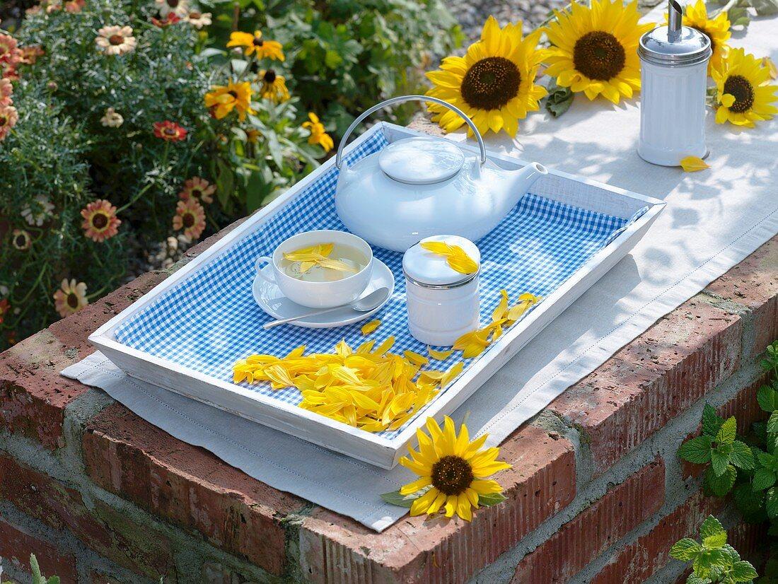 Sunflower petal tea, tea things on tray