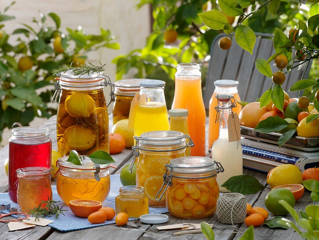 Citrus fruit products: jelly, bottled fruit and juice