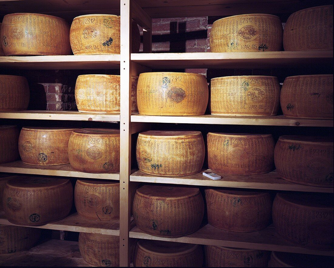 Parmesan cheeses in a cheese store, Parma, Italy