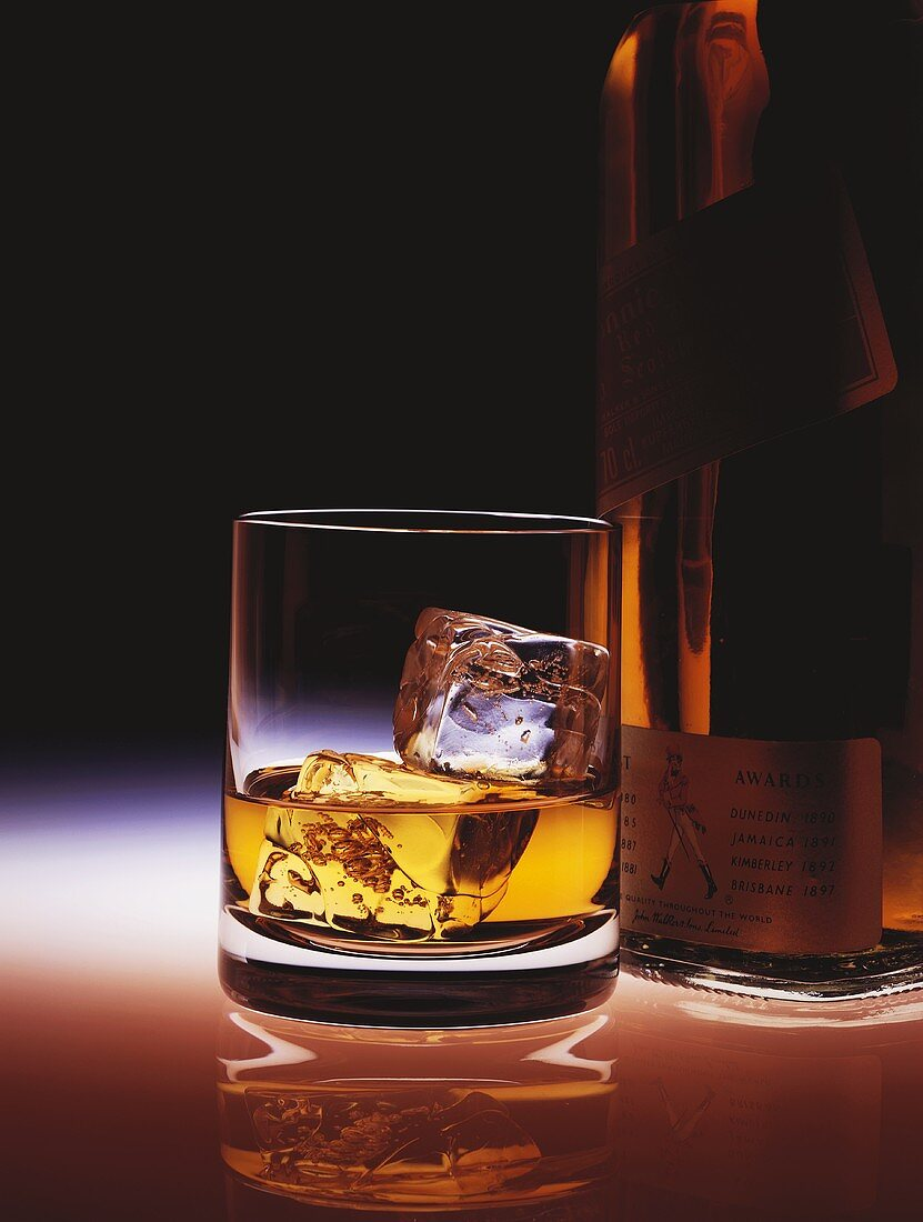 A glass of Scotch whisky with ice cubes