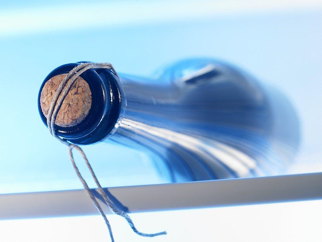 Prosecco bottle in fridge