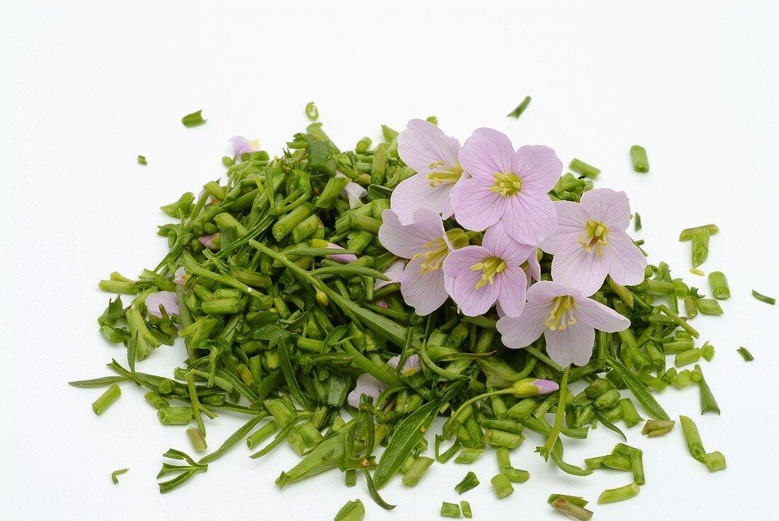 Blüten und kleingeschnittene Stengel vom Wiesenschaumkraut