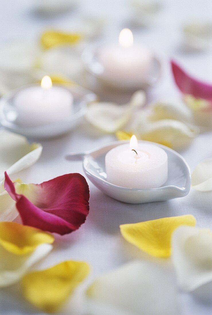 Tea lights and rose petals (table decoration)