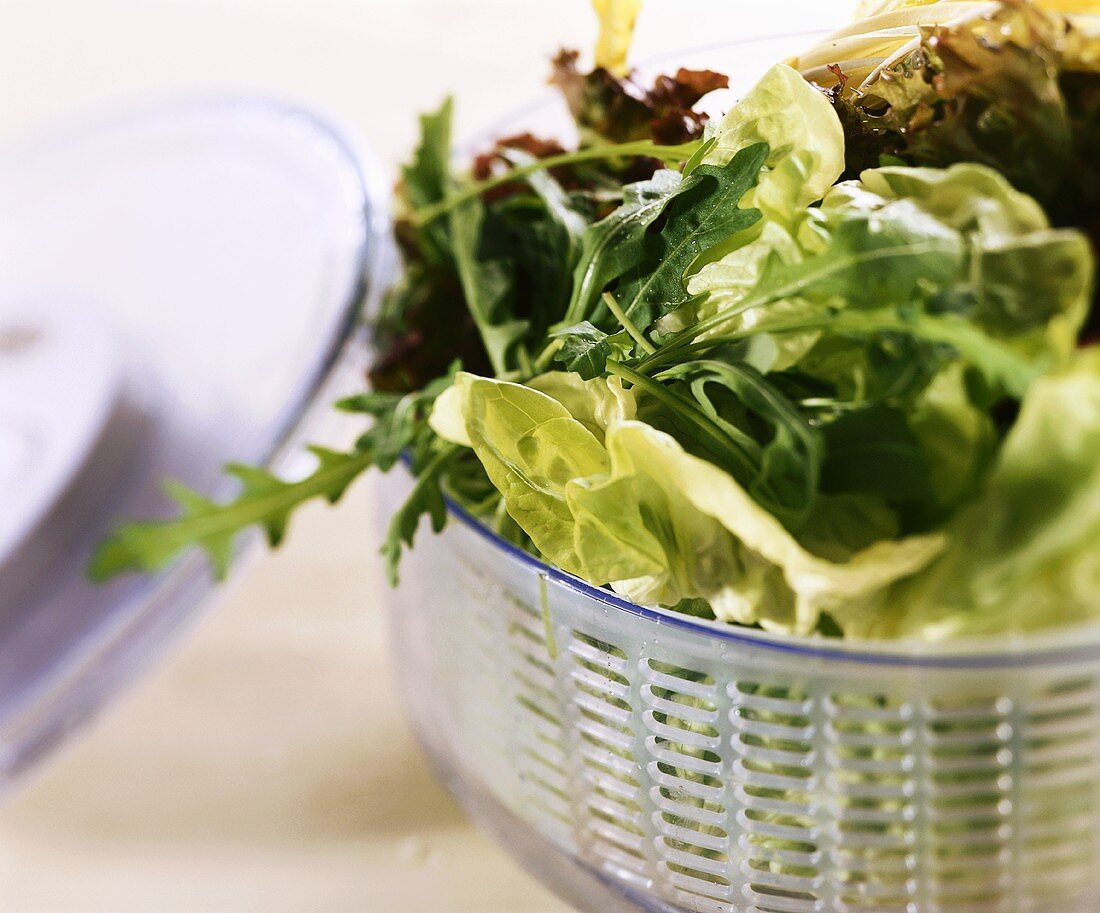 Mixed salad leaves in a salad spinner