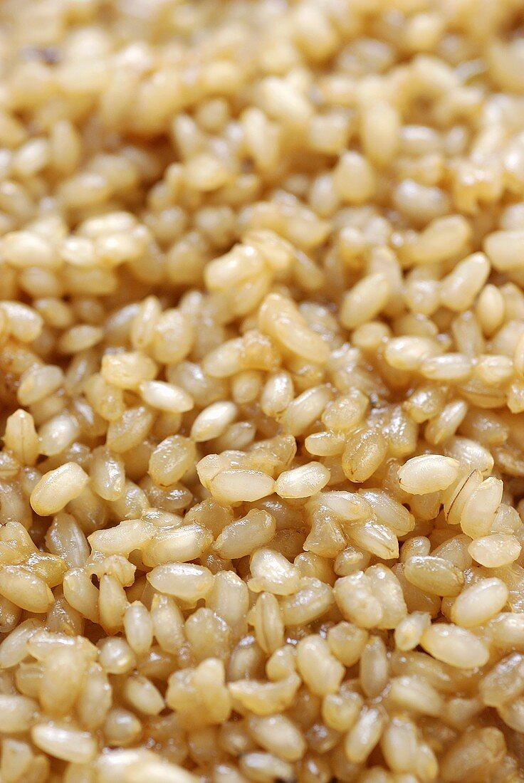 Cooked natural short-grain rice