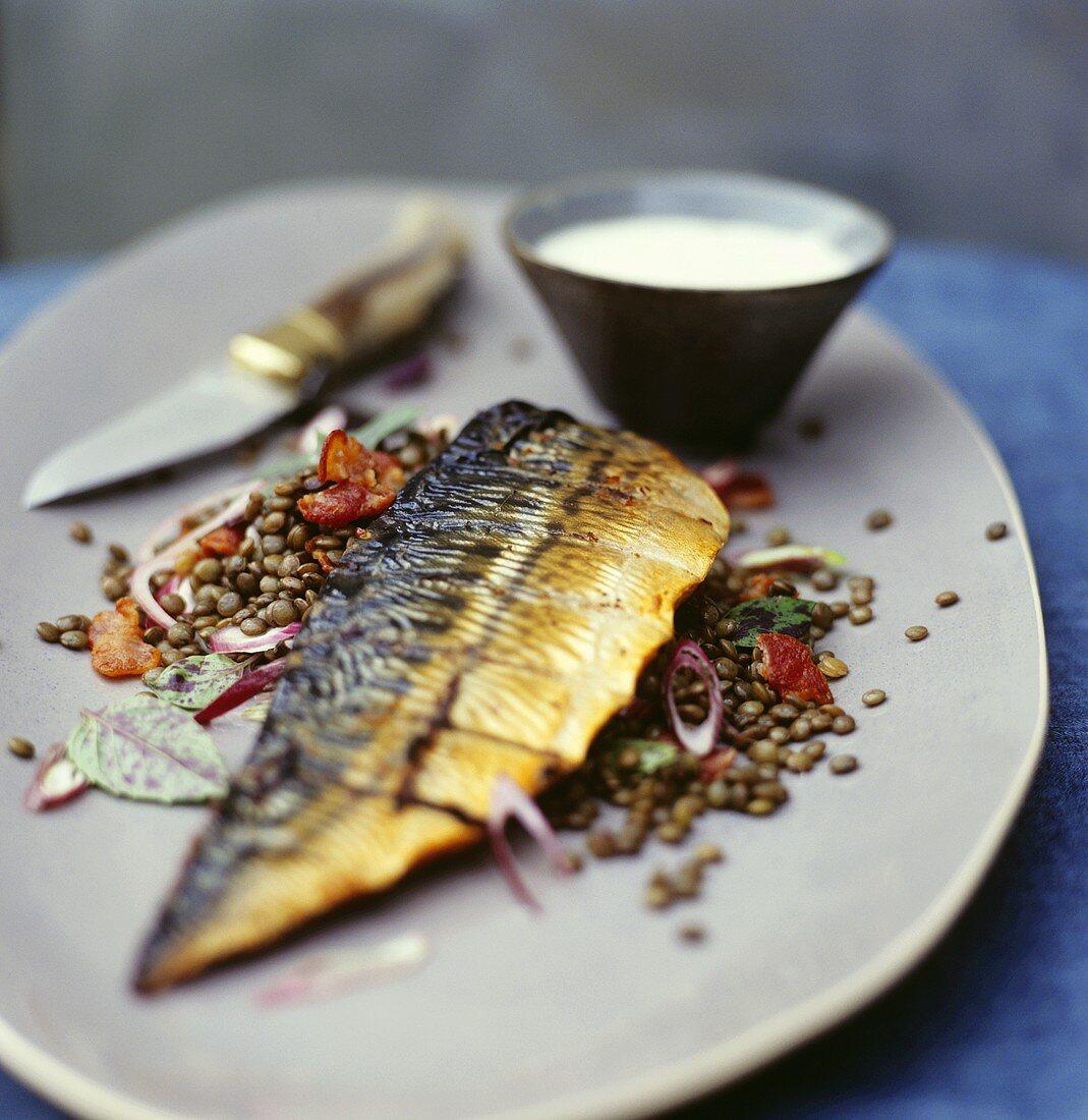 Smoked mackerel on lentil salad