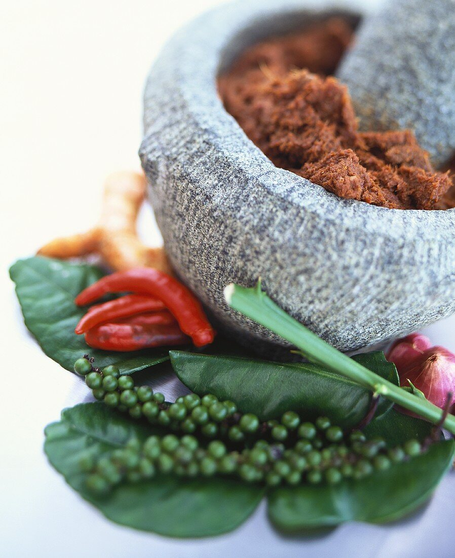Curry paste in a mortar and assorted spices
