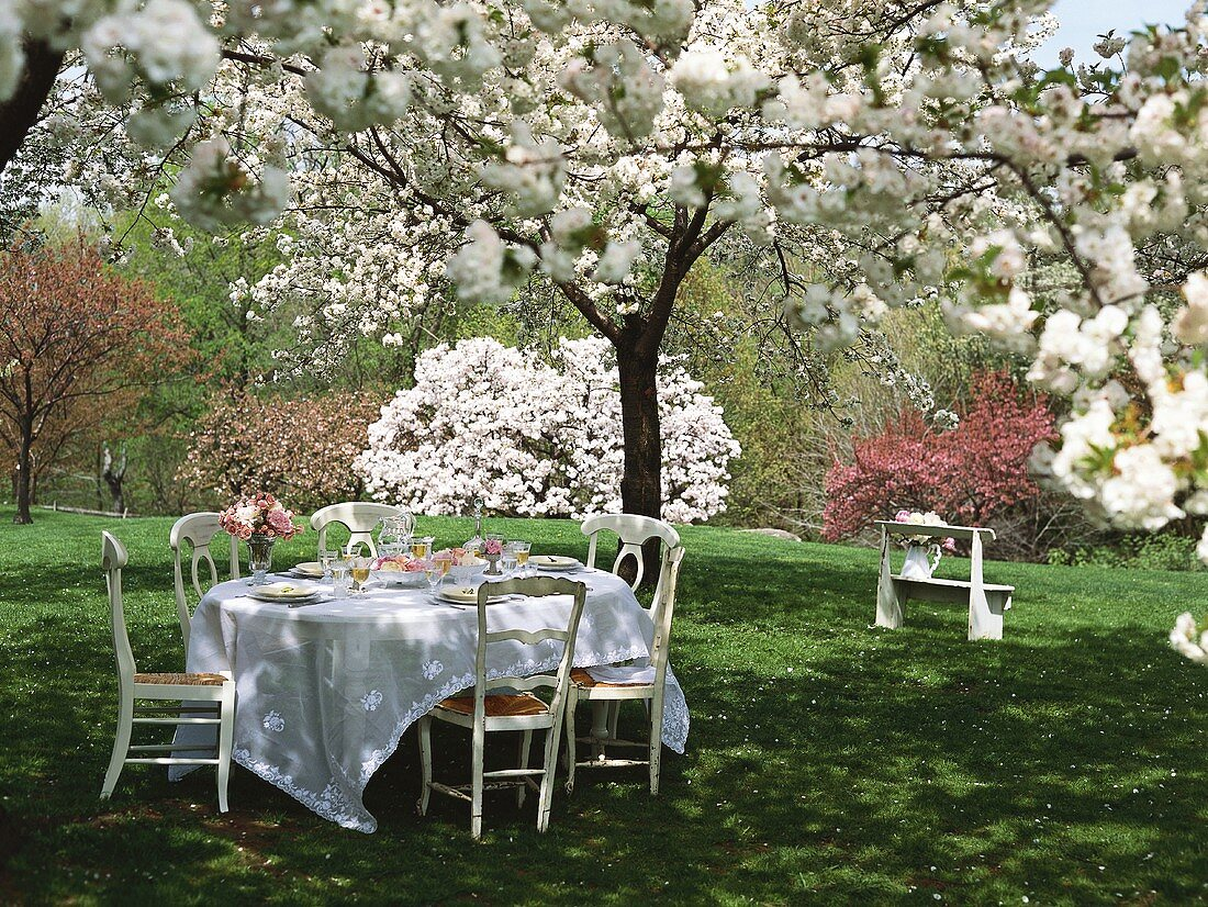Table with flowers among blossoming trees