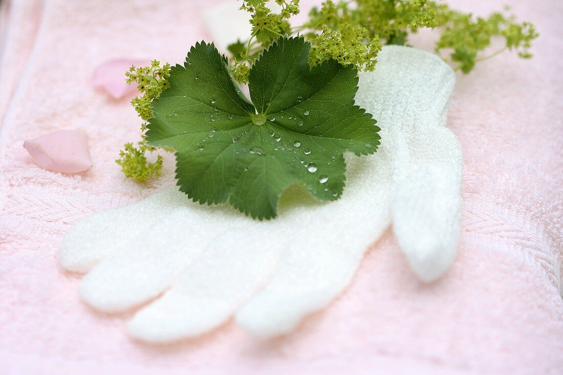 Peeling glove on towels with lady's mantle