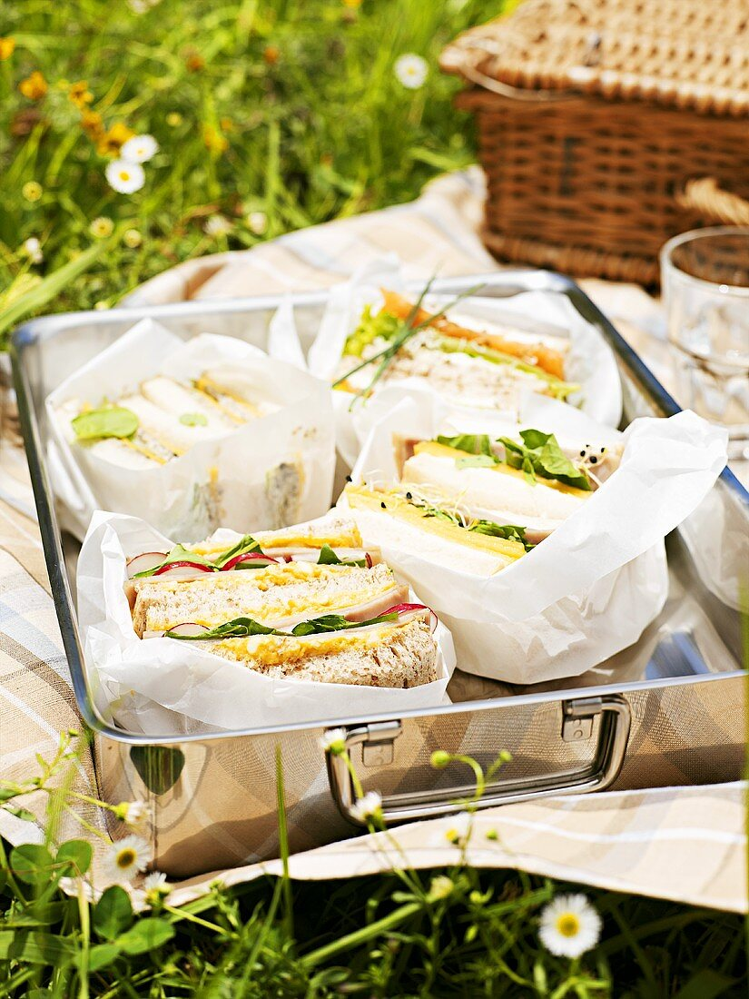Assorted sandwiches for a picnic
