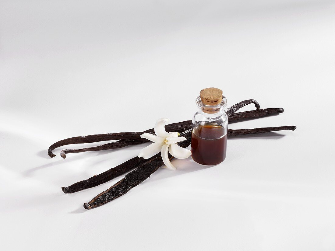 Vanilla pods and vanilla extract in small bottle