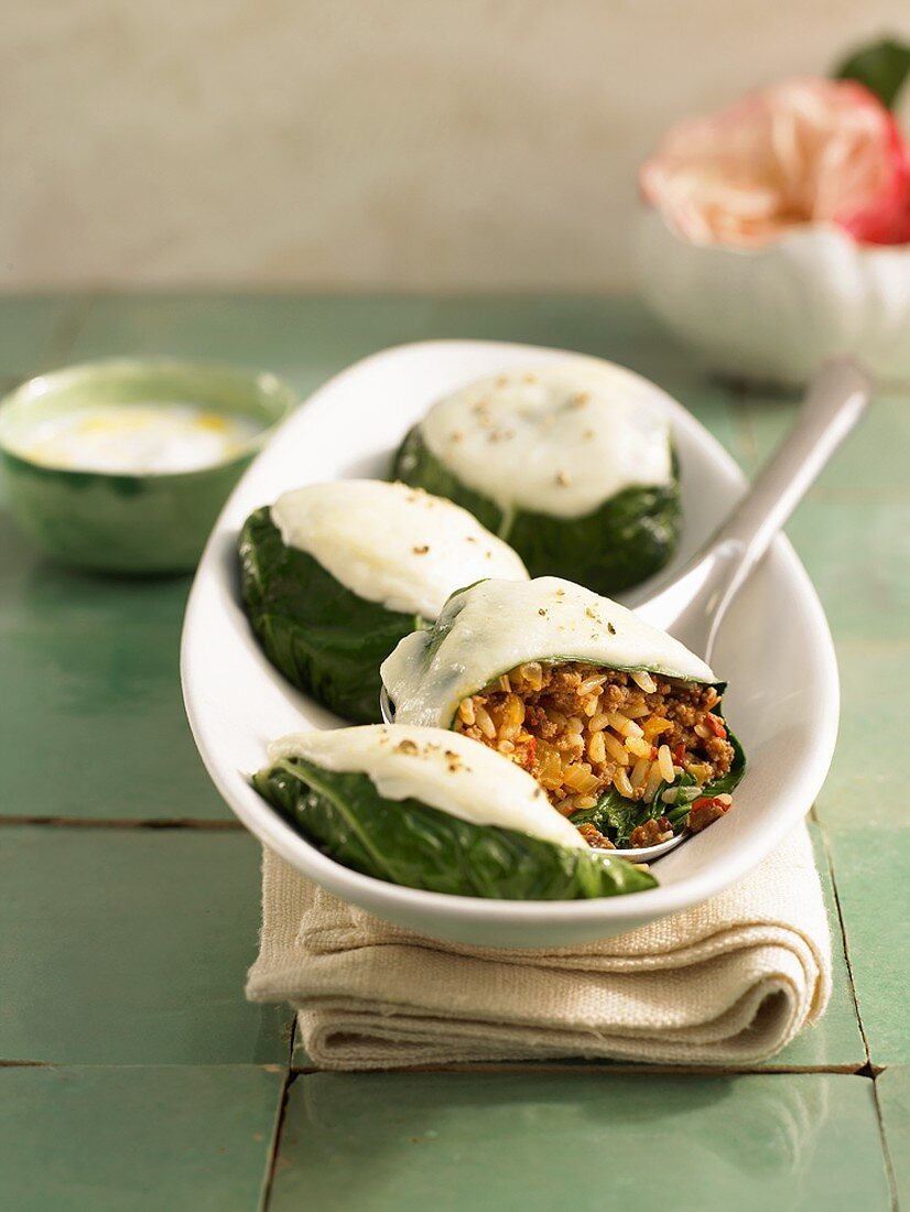 Stuffed chard leaves with mince filling
