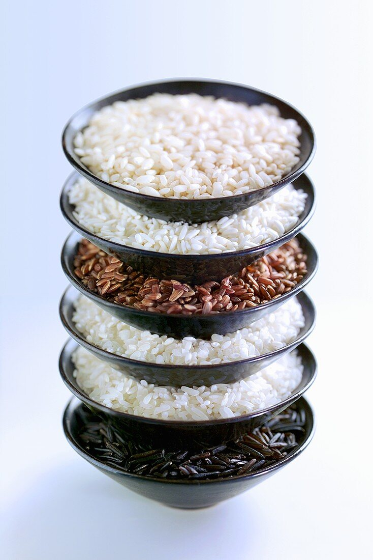Various types of rice in stacked dishes