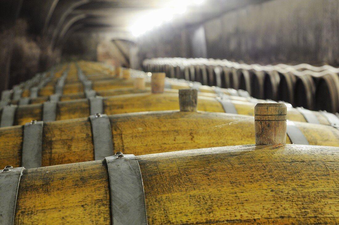 A bung in a barrel of wine
