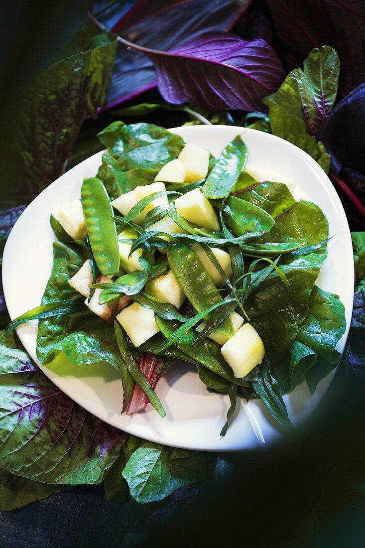 Salad of bottle gourd, mangetout and chard