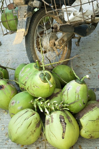 Coconuts for sale in the street, Phnom Penh, Cambodia