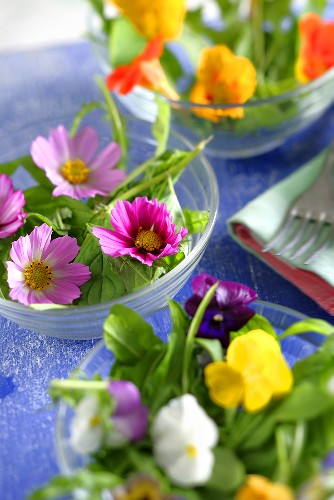 An edible flower salad