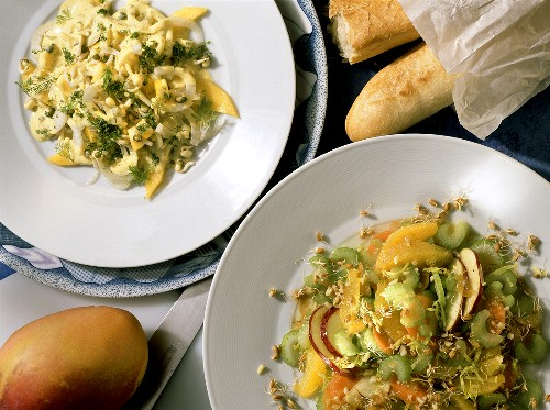 Celery stalk Salad & raw Fennel