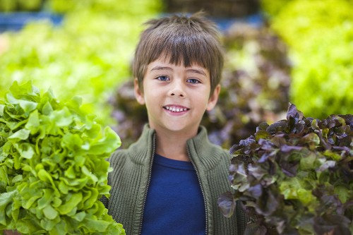 Boy between two lettuces in a supermarket