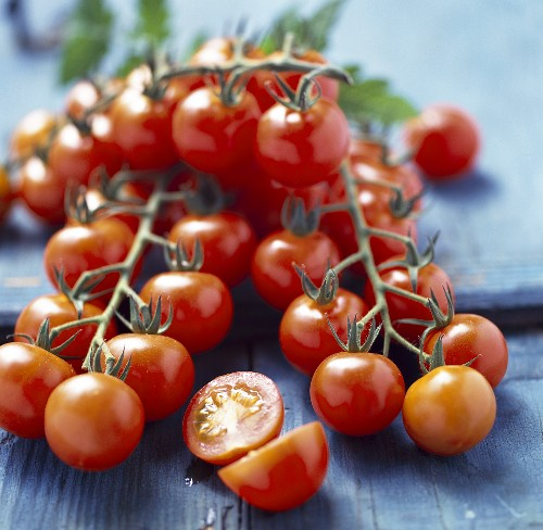 Tomatoes on the vine, variety Conchita (from Netherlands)