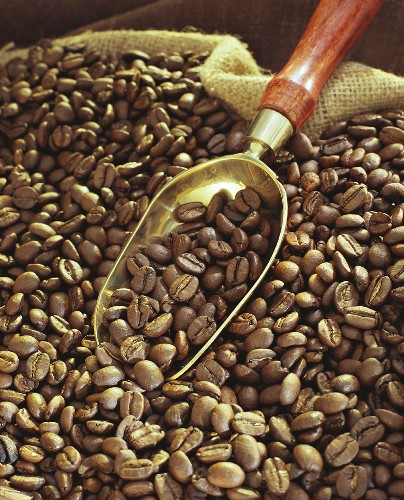 Coffee beans with golden scoop