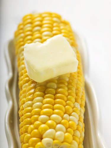 Corn cob with knob of melting butter