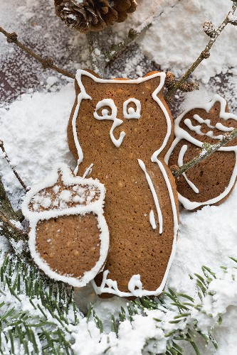 Gingerbread owl and acorns