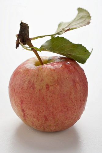 Red apple with stalk and leaves