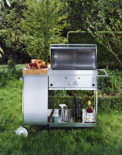 Gas grill in the garden