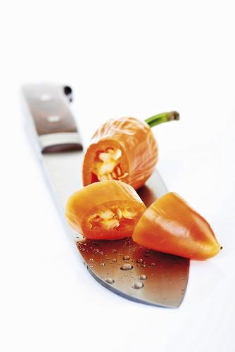 Orange Fresno pepper on knife blade, close-up