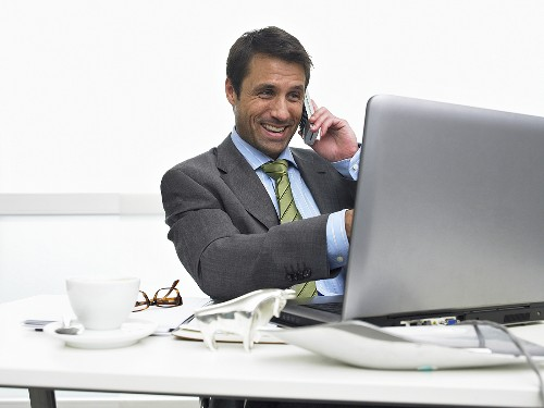 Businessman on telephone pointing at computer screen
