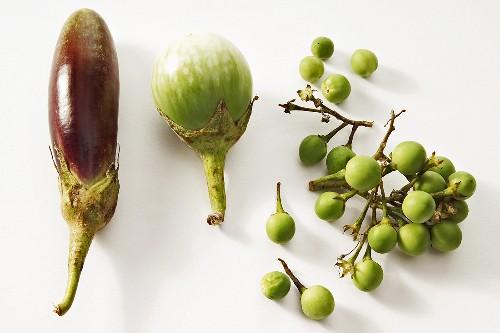 Various types of aubergine