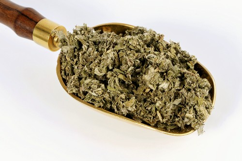Dried Chinese mugwort in a scoop