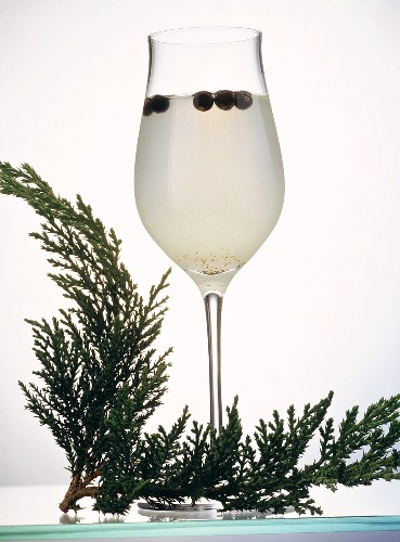 Juniper Drink with Gin