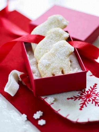 Shortbread polar bears in a red gift box