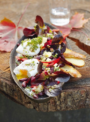 Oak leaf lettuce with a poached egg, Alpine cheese, kidney beans and bread