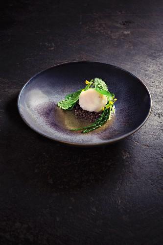 Gegrillter Seeteufel mit Linsen, Weizenbier und Gemüsesprossen