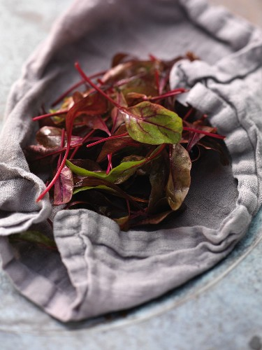 Fresh beetroot leaves on a tea-towel