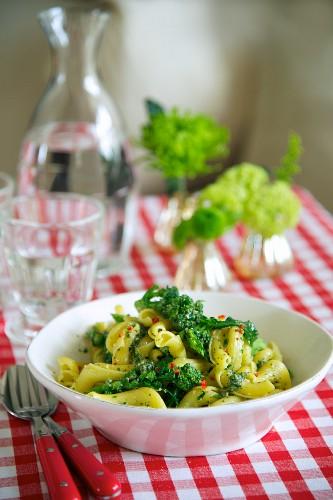 Pasta with pesto and broccoli