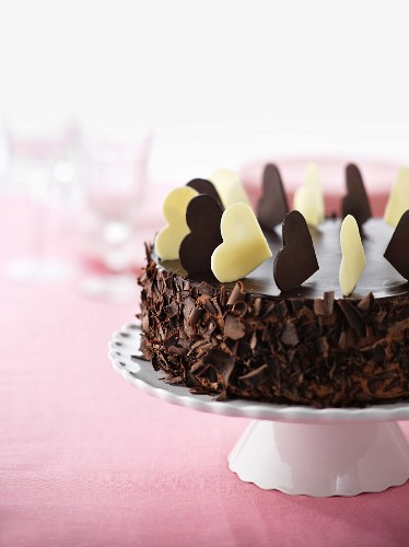 A chocolate and mocha ice cream cake for a party