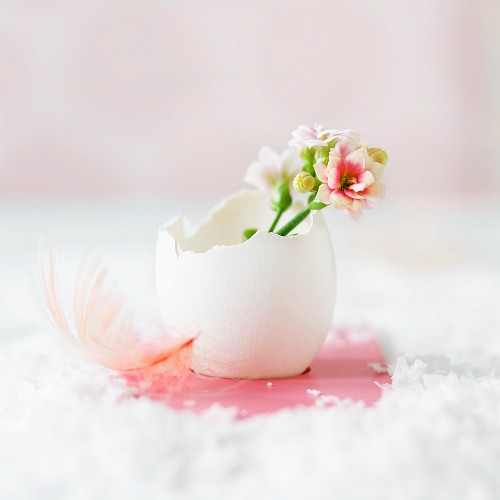 Easter arrangement of spring flowers in egg shell