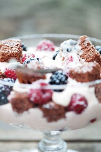 Yoghurt and berry dessert with chocolate sponge