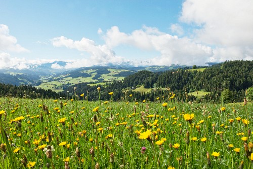 A view from Moosegg (canton of Bern, Switzerland) into Emmental and the Bernese Alps