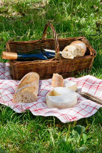 A picnic in a field with wine, bread and cheese